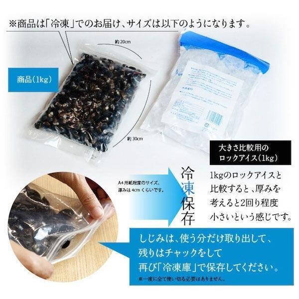 【激得企画】島根県・宍道湖産冷凍しじみ Lサイズ 1kg|shijimiyakawamura|03