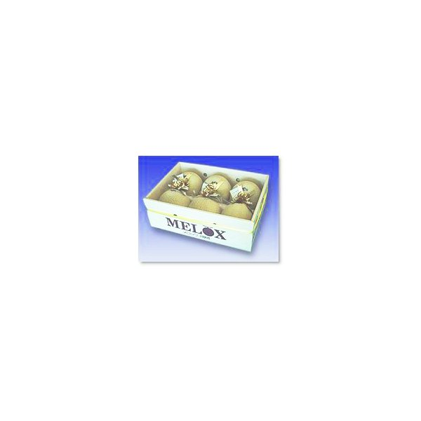 静岡産 温室マスクメロン アローマ印 6個入 送料無料 約1.2kg×6玉 箱入れ