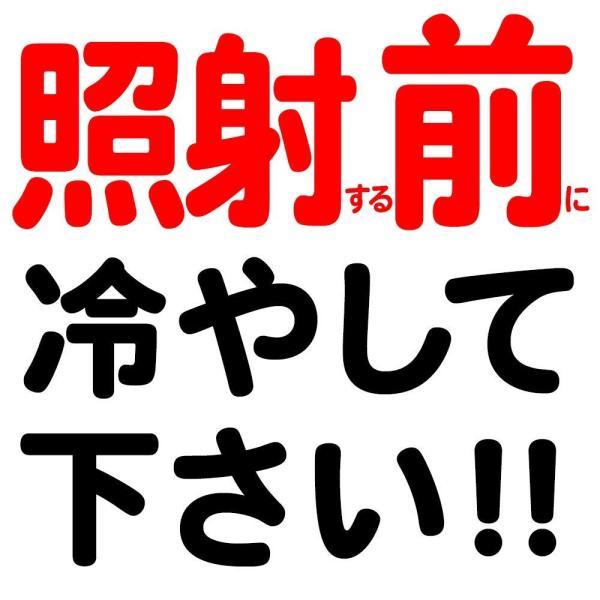 ケノン (ke-non) 脱毛器 日本製 シャンパンゴールド プレミアムカートリッジ付属 まゆ毛脱毛付|shimizunet004|02