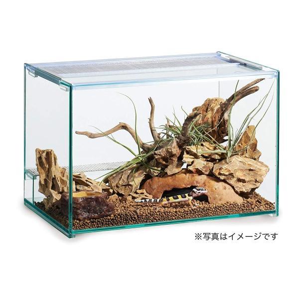 ジェックス エキゾテラ デザートソイル 2kg 爬虫類飼育用ソイル|shimizusyouten01|07