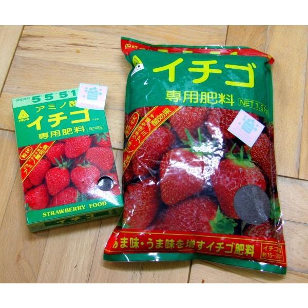 【化成肥料】 苺(いちご)づくりに欠かせない肥料 アミノ酸入「イチゴ専用肥料」 1.5kg_袋入り ★送料別途