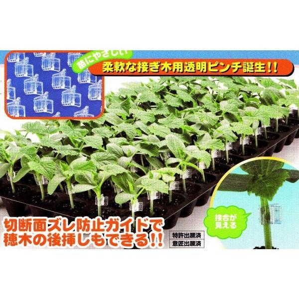 【生産資材】 接木用資材 クリアピンチM(キュウリ・スイカ・メロン用) 〜合わせ接木用ホルダー 20ケ