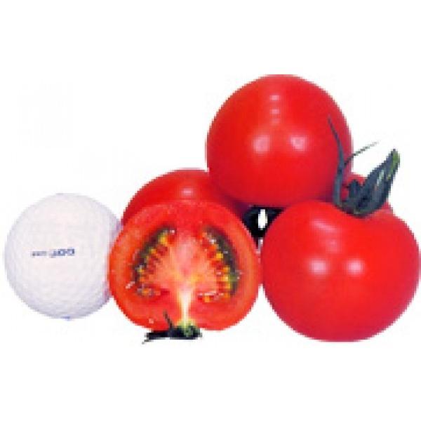 レッドオーレ 19粒【ミニトマト種子 】 カネコ交配 中玉トマト ★新タネは種子切り替えの12月以降のお届を予定