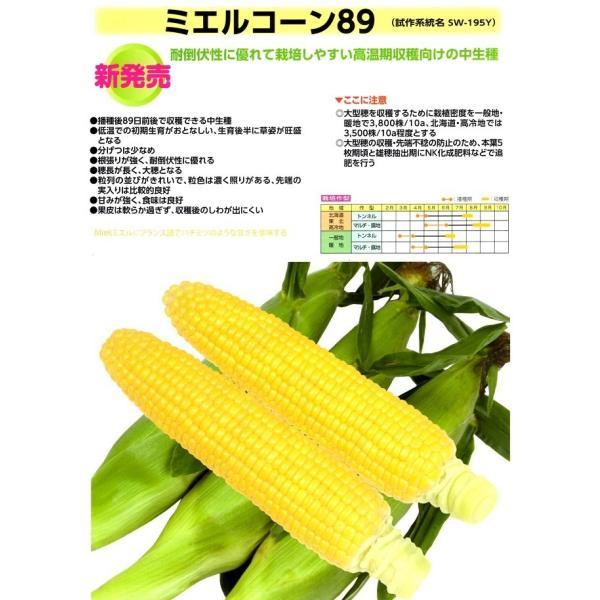 【とうもろこし種子】雪印 「ミエルコーン89」小袋 ★お届けは2月以降より