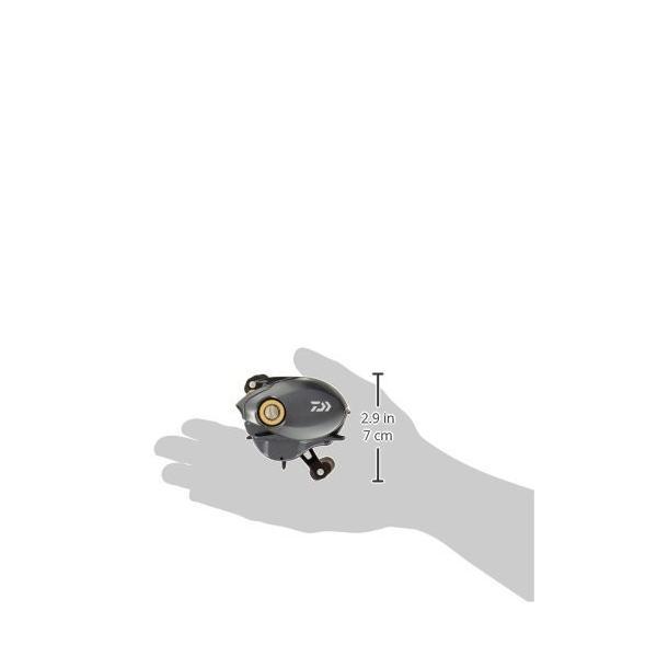 ダイワ(DAIWA) リール タトゥーラ SV TW 6.3R
