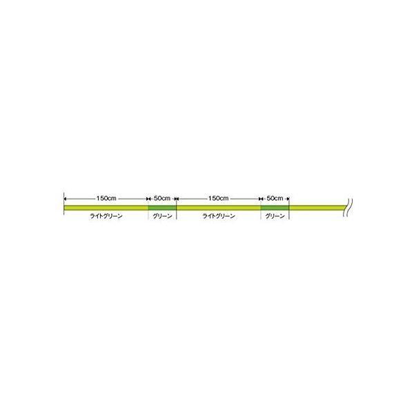モーリス(MORRIS) PEライン バリバス スーパートラウト アドバンス ダブルクロス 100m 0.8号 8lb 8本 ライトグリー
