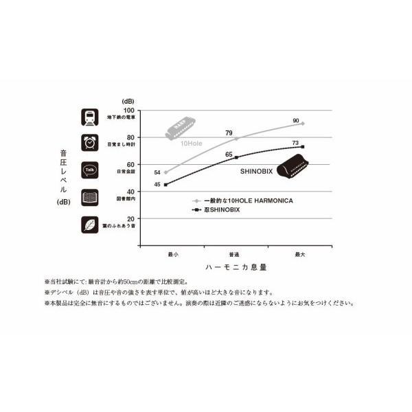 SUZUKI スズキ 忍SHINOBIX ユーザーズセット (サイレンサー/上下ハーモニカカバー/カバー留めネジ/セミハードケー shimoyana 03