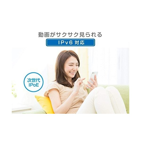 I-O DATA WiFi 無線LAN ルーター ac1200 867+300Mbps IPv6 フィルタリング デュアルバンド 3階建/4LDK/返金保証 WN-AX1167GR2/E|shimoyana|08