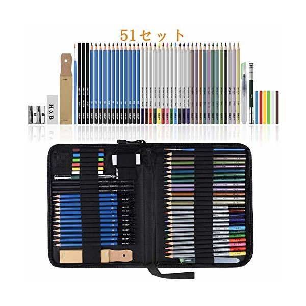 Lypumso スケッチ鉛筆 51セット 鉛筆セット デッサン鉛筆 紙ペン 消しゴム 鉛筆ケース 紙ヤスリ 素描 美術 美術