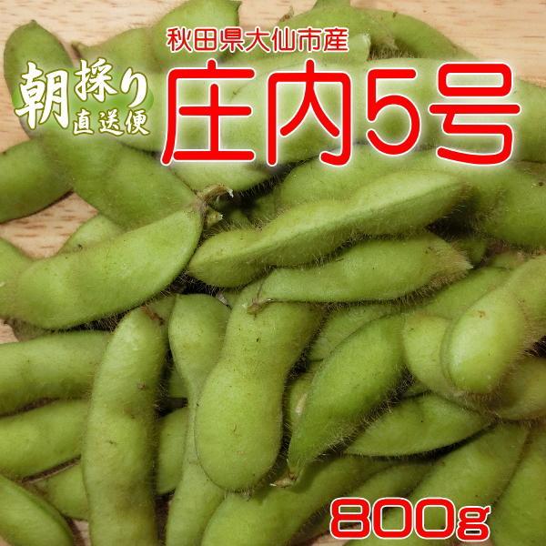 枝豆1kg 庄内5号茶豆 朝採りエダマメ産地直送 えだまめ予約注文(収穫時期:9月10日以降) だだちゃ豆の代表品種