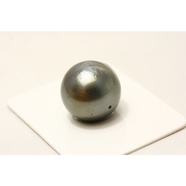 タヒチ黒蝶真珠パールルース 両穴 14mm ブラックグレーカラー