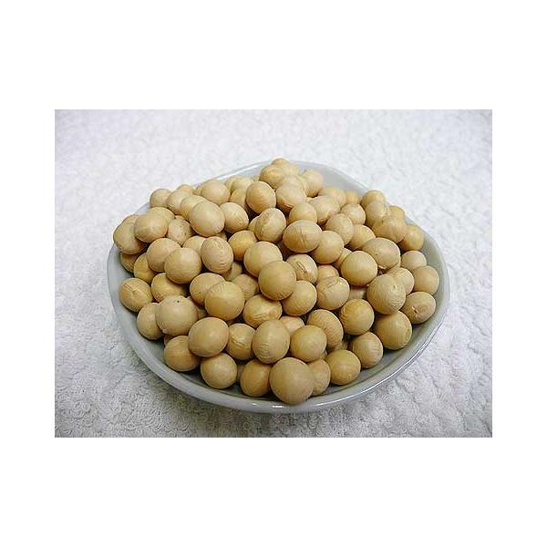 令和2年産 手作り味噌材料 北海道産普通栽培大豆とよまさり 30kg(大袋)