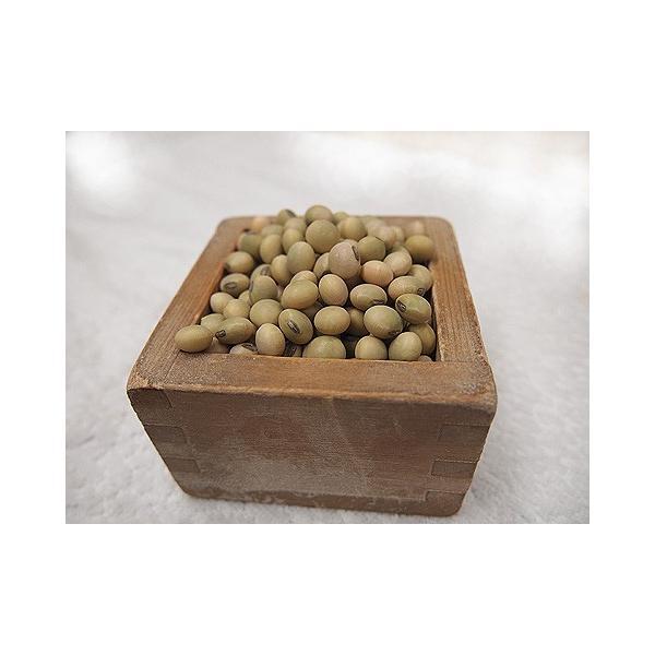 平成29年産 手作り味噌材料 北海道産普通栽培青大豆音更大袖振 1kg
