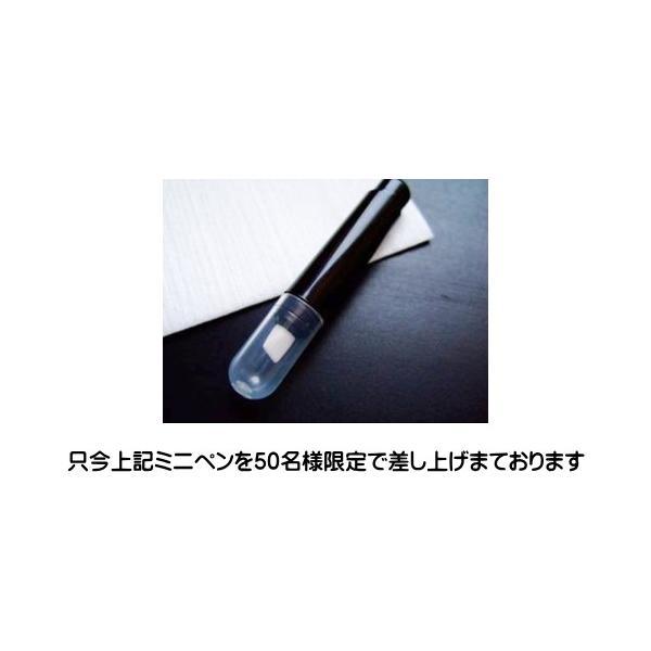 ナノカーボン 接触改善 古いゲームカセットの接点復活にはこれ ファミコン スーパーファミコン ゲームボーイ等|shins|05