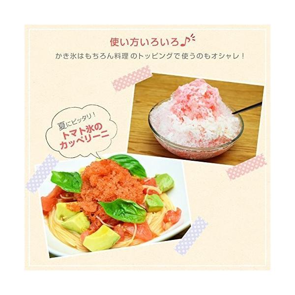 ROOMMATE ハンディかき氷器 アイスマジックIII EB-RM16A shins 04