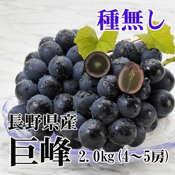 9月下旬出荷 長野県産 種無し巨峰 約2kg(4〜5房) No.関4 (395)
