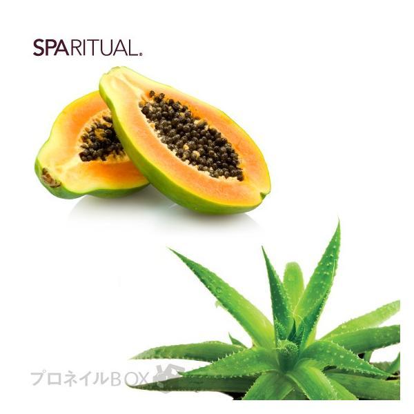 SpaRitual スパリチュアル ソールメイト フットバーム フットクリーム 保湿 かかと 100mL 品番 86800 SPARITUAL JAPAN 直営店|shinwa-corp|03