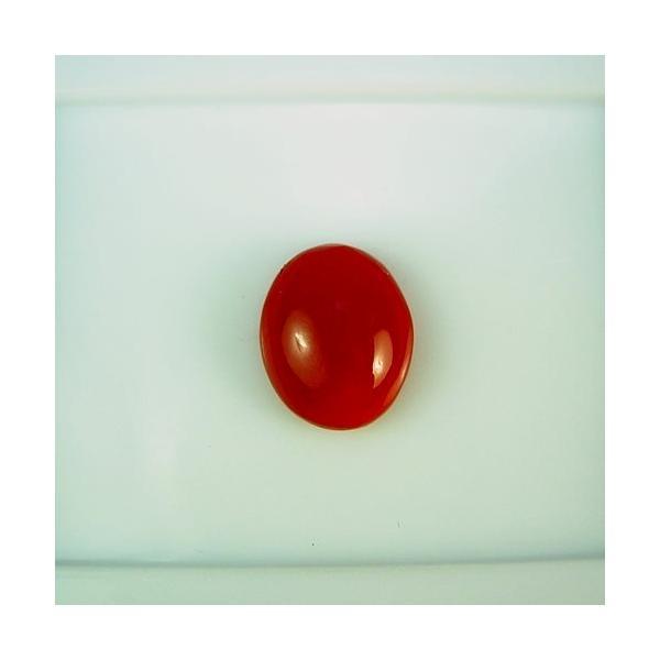 血赤珊瑚 10×8mm 小判 ジュエリールース df745