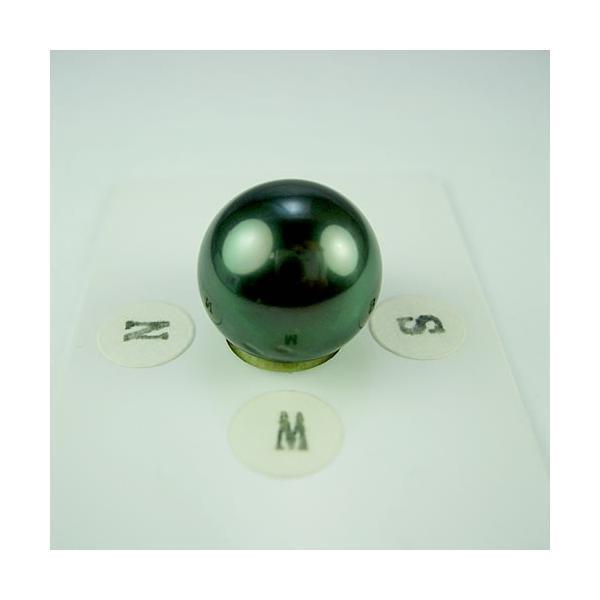 タヒチパール 14.1mm ラウンド ジュエリールース dg499