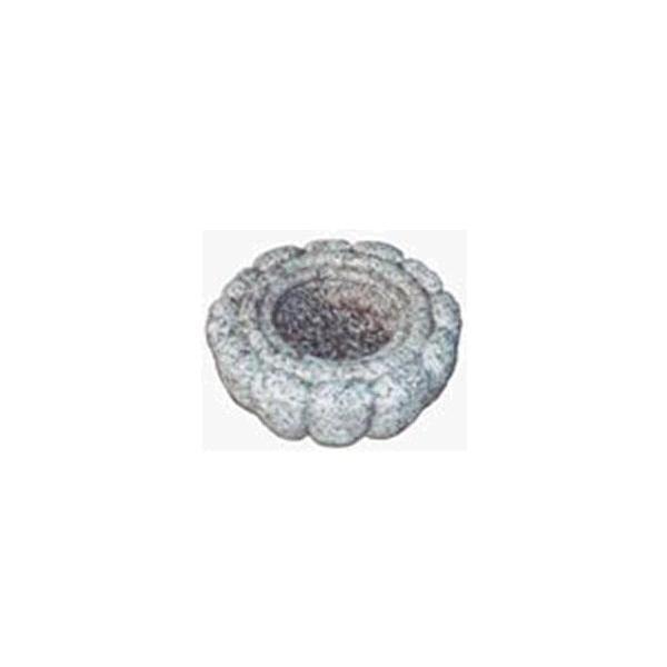 菊鉢20cm|shioken