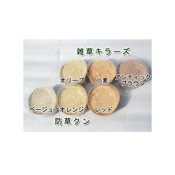 雑草防止に・水で固まる土 防草クン 15kg|shioken|04