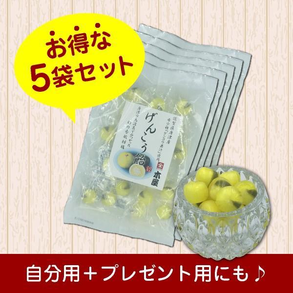 幻の柑橘使用「げんこう飴」 お得な5袋セット(420円/袋)|shioyu-naginoto|03