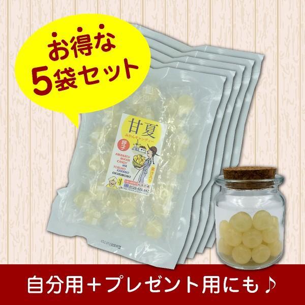 甘夏の果汁入り「甘夏みかんキャンディー」 お得な5袋セット(450円/袋)|shioyu-naginoto|03