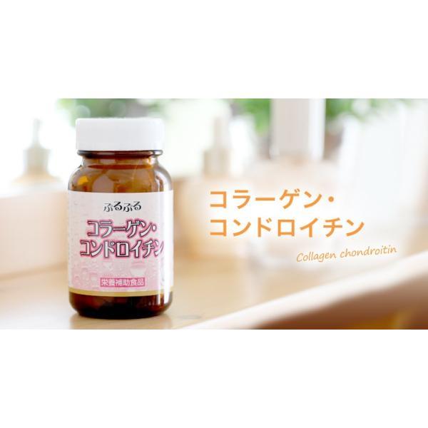 ※コラーゲン&コンドロイチン粒/180粒/ワイス|shiraishiyakuhin|04