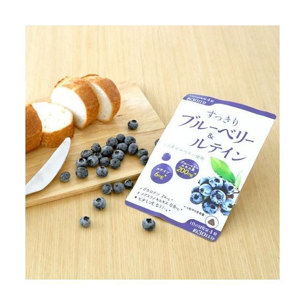 ※すっきりブルーベリー&ルテイン/120粒/ワイス shiraishiyakuhin 03