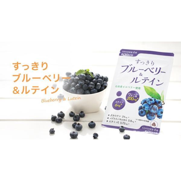 ※すっきりブルーベリー&ルテイン/120粒/ワイス shiraishiyakuhin 04