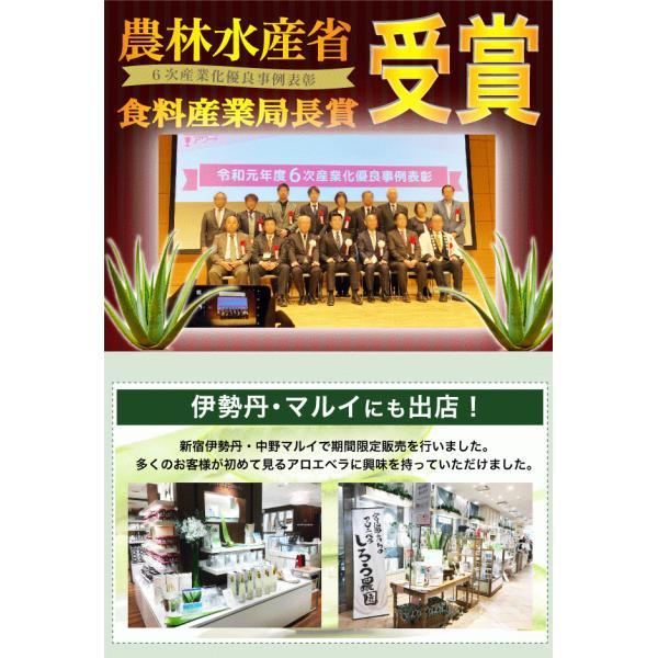 同時購入で送料無料☆宮古島の無農薬アロエベラ100%生 ジュース 720ml|shirounouen|02