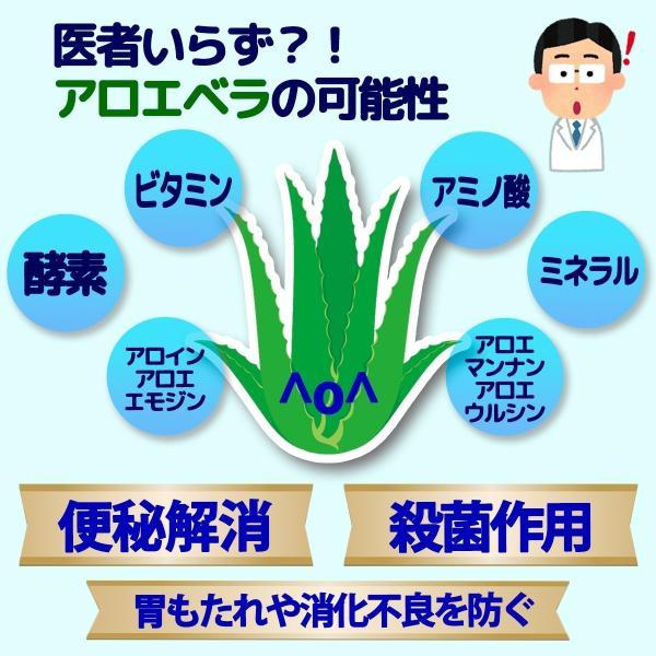 同時購入で送料無料☆宮古島の無農薬アロエベラ100%生 ジュース 720ml|shirounouen|03