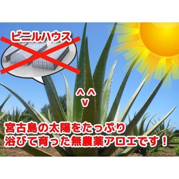 同時購入で送料無料☆宮古島の無農薬アロエベラ100%生 ジュース 720ml|shirounouen|05