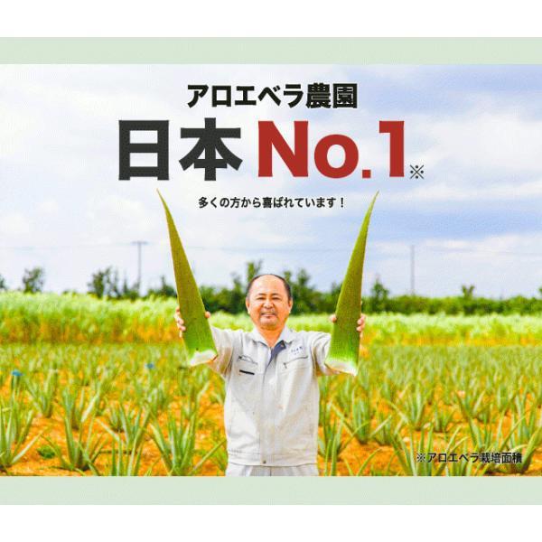 アロエベラ アロエ 生葉 10kg|shirounouen|03