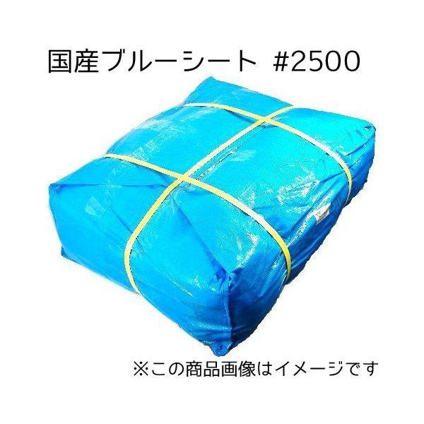 法人様宛限定 ブルーシート #2500 (国産) 10m×10m 2枚セット(SK) 敷物 対策 海水浴 キャンプ 行楽 花見