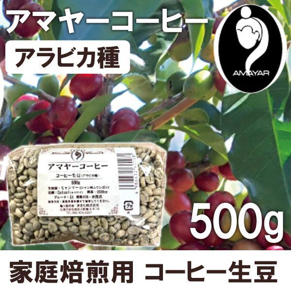 家庭焙煎用コーヒー生豆アマヤーコーヒー(500g)まるも