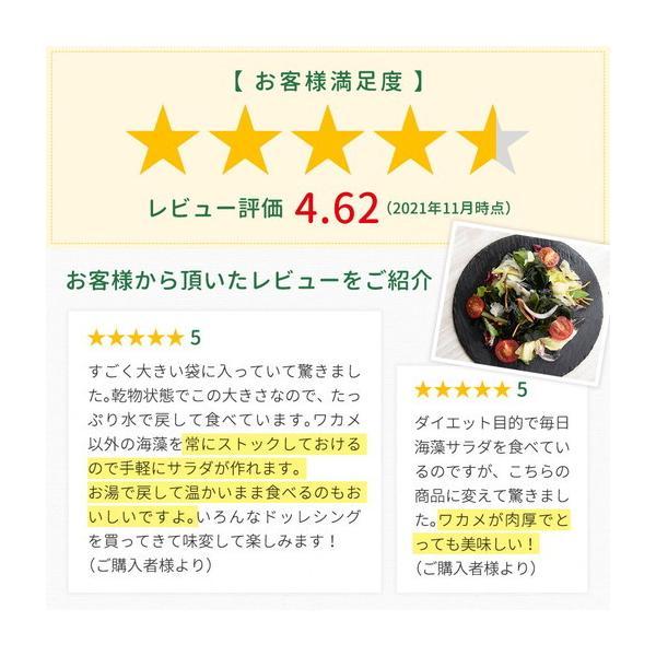 ダイエット食品 寒天 湯戻し簡単メガサイズ 寒天海藻サラダ メガ盛260g サラダ ミネラル 送料無料 100品 予約商品|shizennoyakata|04
