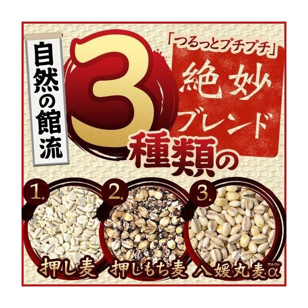 もち麦押し麦丸麦配合 国産 麦 館の麦めし500g 麦飯|shizennoyakata|02