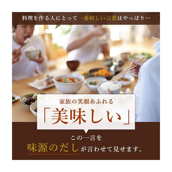 送料無料 だし 宗田節 国産 味源のだし 50包入り  業務用  出汁 出汁パック 鰹|shizennoyakata|12