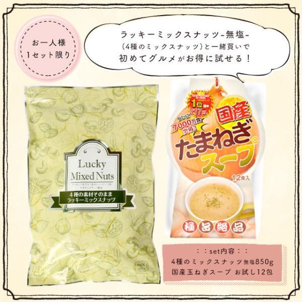 特別福袋 ミックスナッツ 4種入り無塩 850g + 国産玉ねぎスープ 12包  送料無料 アイカタ選手権