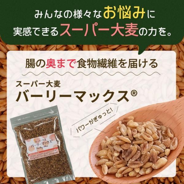 送料無料 雑穀 スーパー大麦 バーリーマックス ヘルシー 大麦 バーリーマックス 800g(400g×2) ダイエット 無添加 糖質 オフ 大腸活 食物繊維|shizennoyakata|04