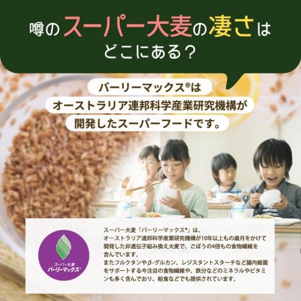 送料無料 雑穀 スーパー大麦 バーリーマックス ヘルシー 大麦 バーリーマックス 800g(400g×2) ダイエット 無添加 糖質 オフ 大腸活 食物繊維|shizennoyakata|05