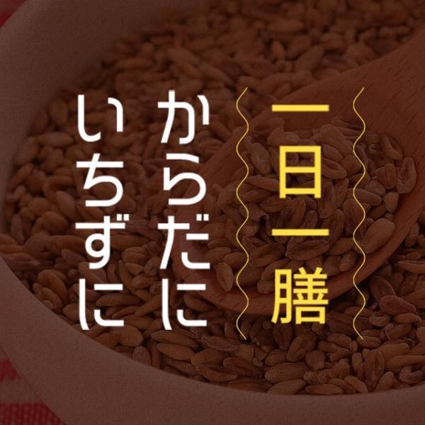 送料無料 雑穀 スーパー大麦 バーリーマックス ヘルシー 大麦 バーリーマックス 800g(400g×2) ダイエット 無添加 糖質 オフ 大腸活 食物繊維|shizennoyakata|08