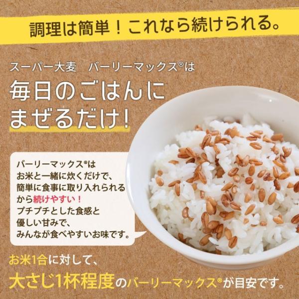 送料無料 雑穀 スーパー大麦 バーリーマックス ヘルシー 大麦 バーリーマックス 800g(400g×2) ダイエット 無添加 糖質 オフ 大腸活 食物繊維|shizennoyakata|09