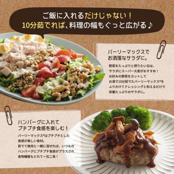 送料無料 雑穀 スーパー大麦 バーリーマックス ヘルシー 大麦 バーリーマックス 800g(400g×2) ダイエット 無添加 糖質 オフ 大腸活 食物繊維|shizennoyakata|10