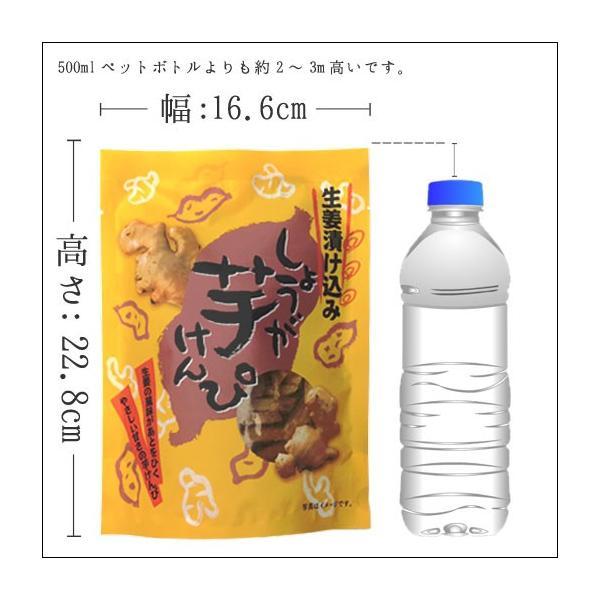 スイーツ (栗 芋 秋 かぼちゃ)生姜けんぴ お試し 145g  ( 芋けんぴ いもけんぴ )|shizennoyakata|04