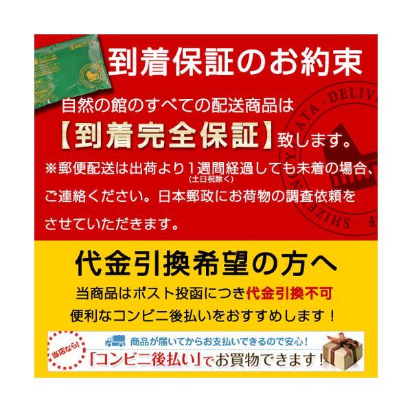 スイーツ (栗 芋 秋 かぼちゃ) 生姜けんぴ お試し 145g  ( 芋けんぴ いもけんぴ ) 送料無料|shizennoyakata|05