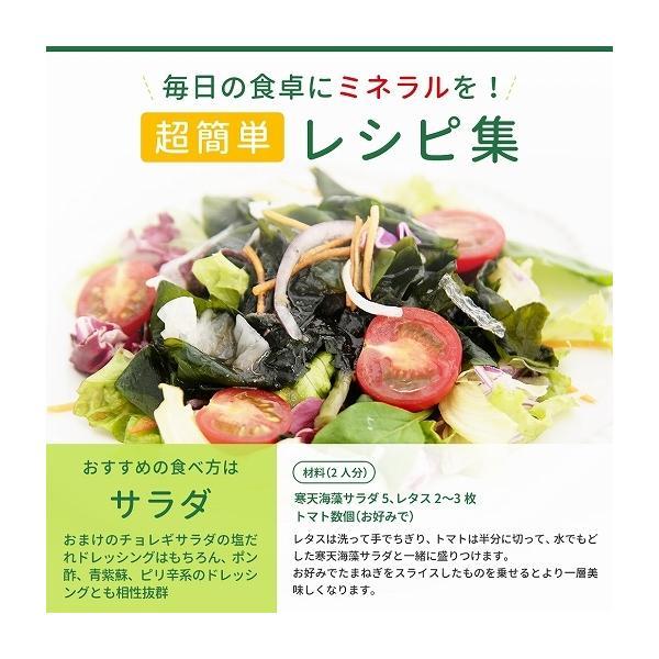 福袋 海藻サラダ まとめ買い 送料無料 寒天海藻サラダ 4袋セット 1040g(260g×4) ダイエット 業務用 SPセット|shizennoyakata|11