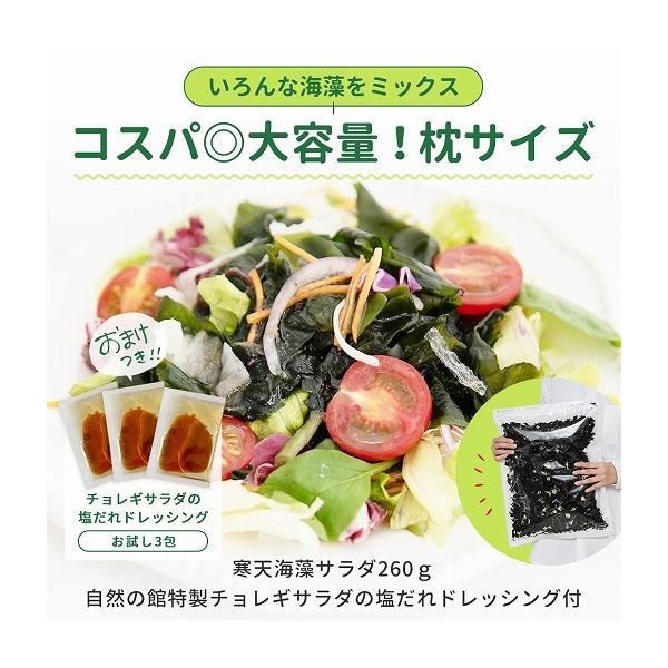福袋 海藻サラダ まとめ買い 送料無料 寒天海藻サラダ 4袋セット 1040g(260g×4) ダイエット 業務用 SPセット|shizennoyakata|03