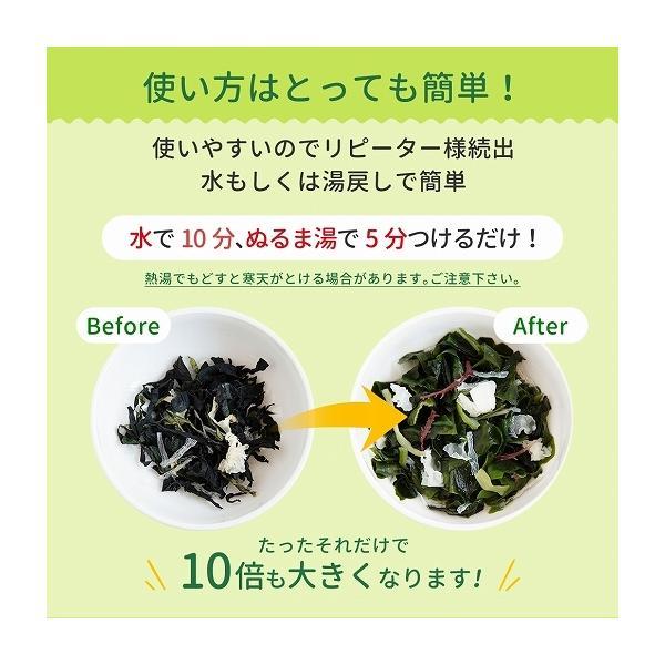 福袋 海藻サラダ まとめ買い 送料無料 寒天海藻サラダ 4袋セット 1040g(260g×4) ダイエット 業務用 SPセット|shizennoyakata|09